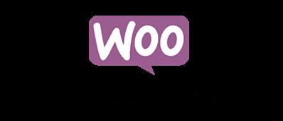 framework-icon3